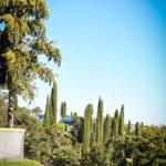 Trilhas - Clube de Campo Caco Velho - Espírito Santo do Pinhal-SP